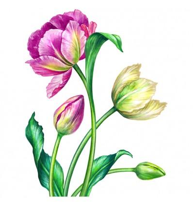 FDC Vinilo floral 1000