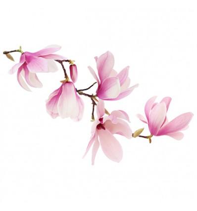 FDC Vinilo floral 1004