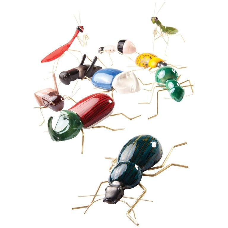 Fauna Collection