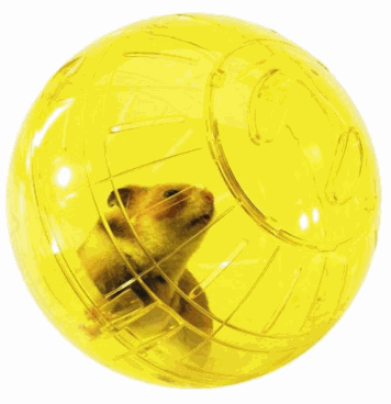 Savic Bola Runner juegos Hamsters, ratas, degús