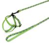 nobby arnes+correa roedores con diseño y color verde