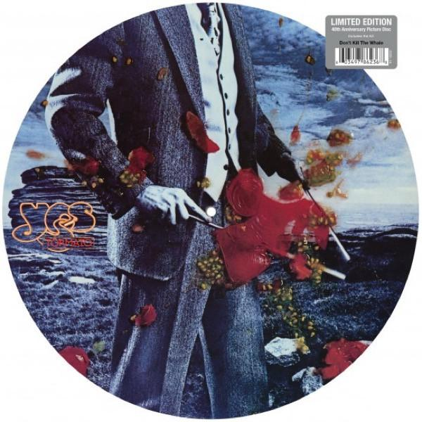 """Rhino PICTURE DISC  LP YES """"TORMATO"""""""