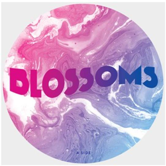 "Picture disc Blossoms, Joe Duddell ""The No. 6 Ensemble - Live From Portmeirion Town Hall, Festival No. 6"" 10"""