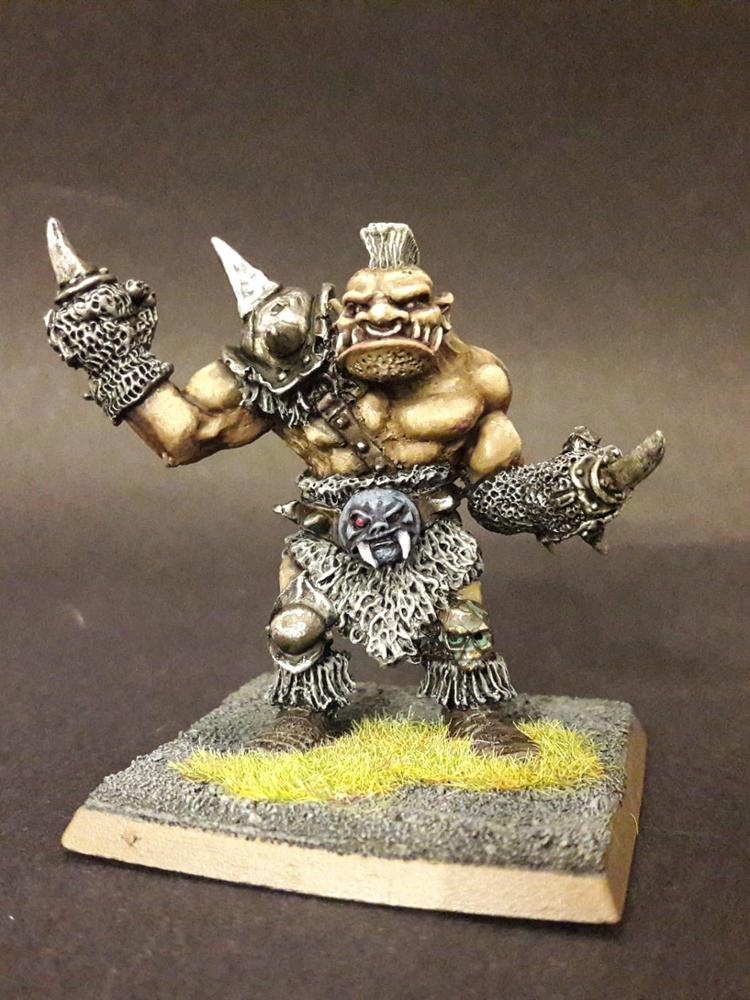 Ogre fighter