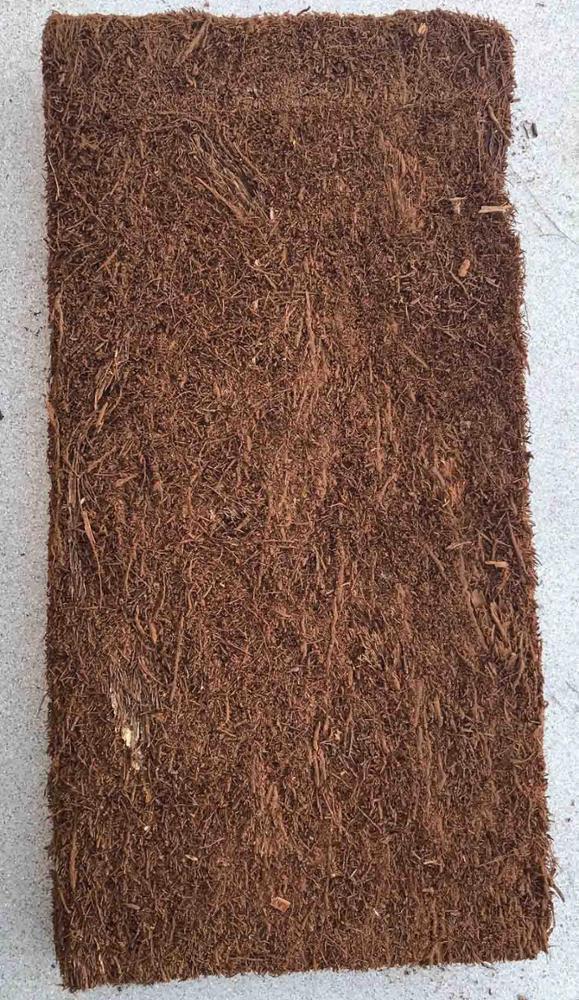 Fernwood Tree Fern plancha 30 x 15 x 2,5 cm