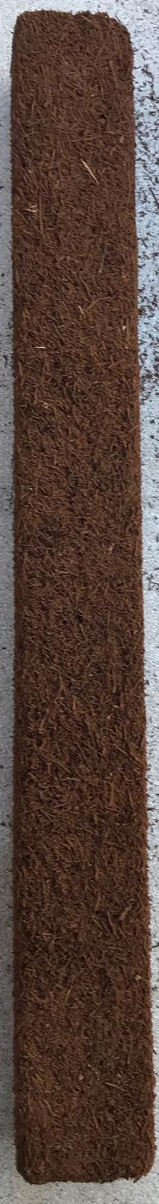 Fernwood Tree Fern Totem 50 x 5 x 5 cm