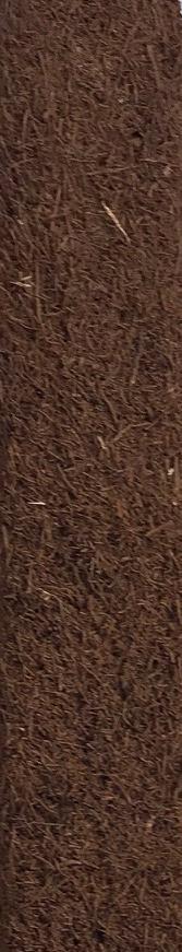 Fernwood Tree Fern Totem 25 x 5 x 5 cm